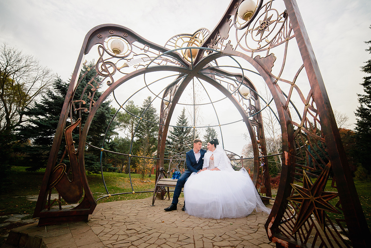 год парк у дирижабля для свадебной фотосессии том, что