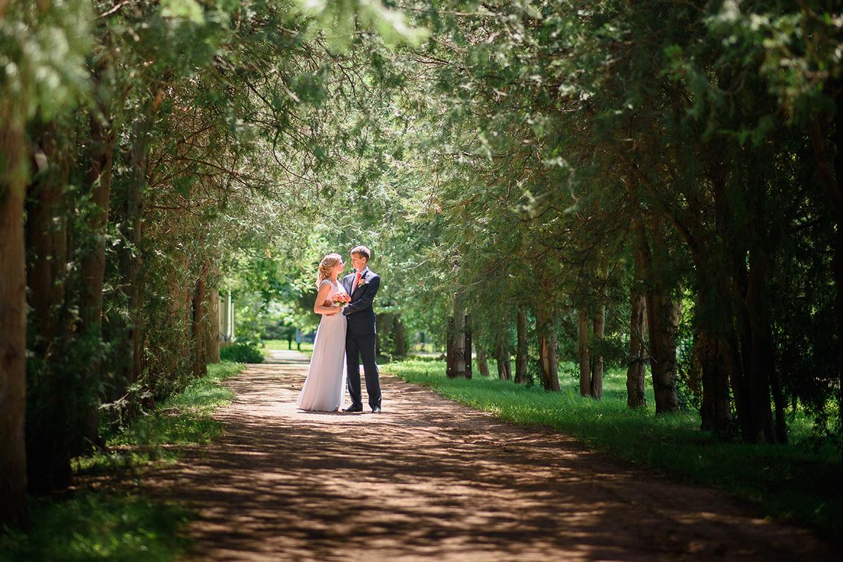 сюжетные парк у дирижабля для свадебной фотосессии животное издавало